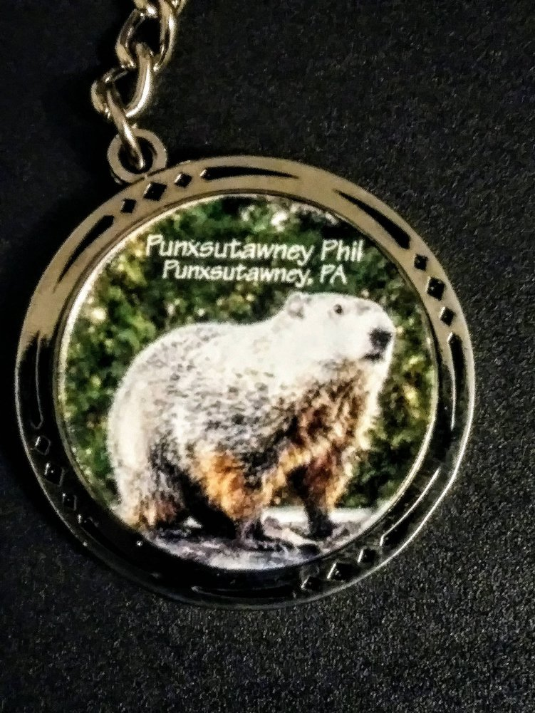 Groundhog  Spinner Key Chain  Image a
