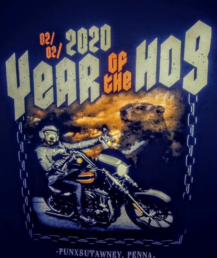 Year of the Hog 2020 Tshirt Image a
