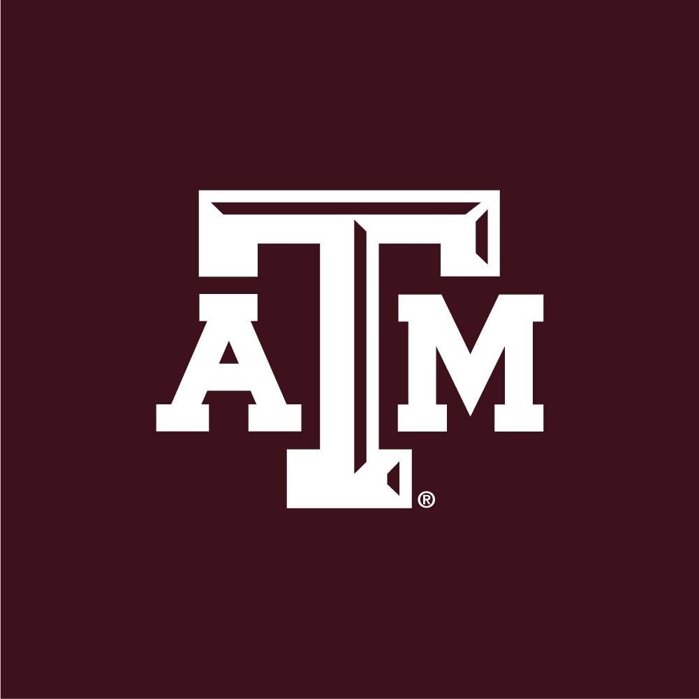 Texas A&M Aggies Mesh Shorts Image a
