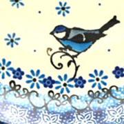 Bluebird - 2529
