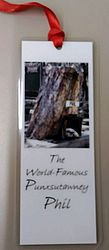 Bookmark - Punxsutawney Phil in his House