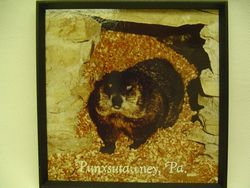 Groundhog Burrow Magnet