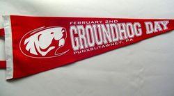 Groundhog Day- Punxsutawney Pennant