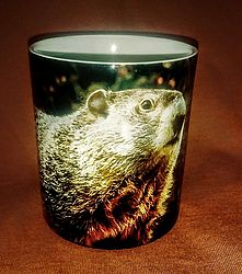 Sublimated Groundhog Mug