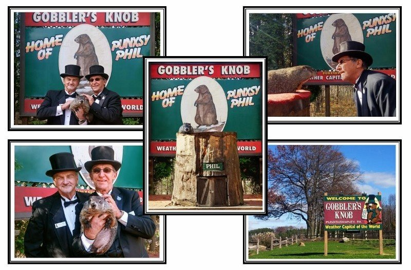 Heritage Groundhog Day Cards (verse) 5 pk. Sku# 244