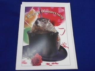 Punxsutawney Phil Anniversary Card
