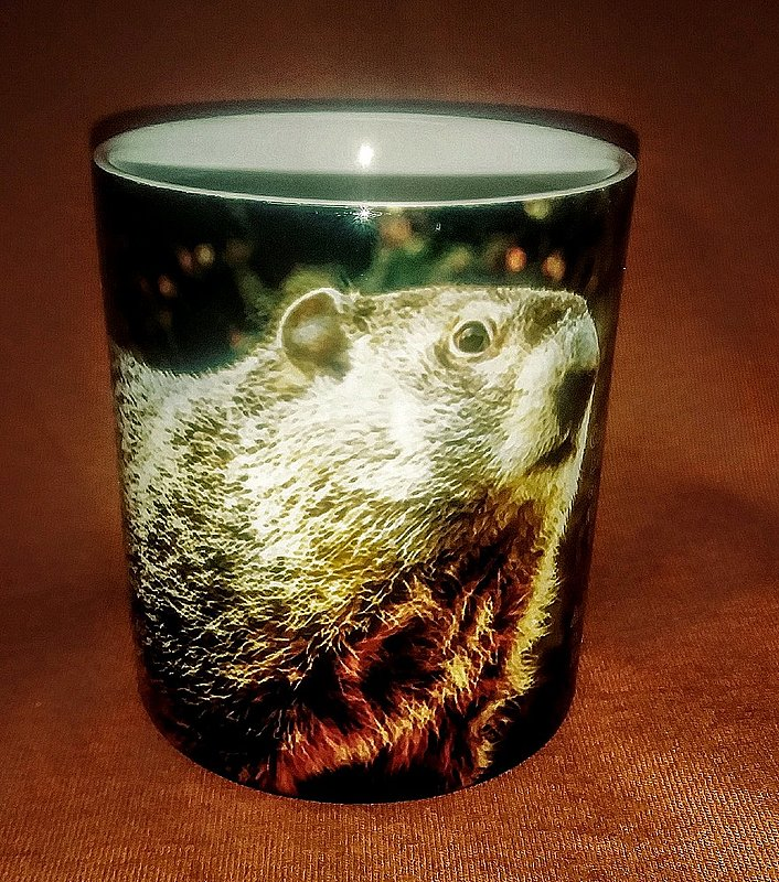 Sublimated Groundhog History Mug Sku# 1180