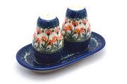 Ceramika Artystyczna Polish Pottery Salt & Pepper Set - Peach Spring Daisy 131-560a (Ceramika Artystyczna)