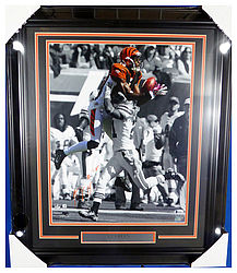 Sports Memorabilia & Autographed Sports Collectibles
