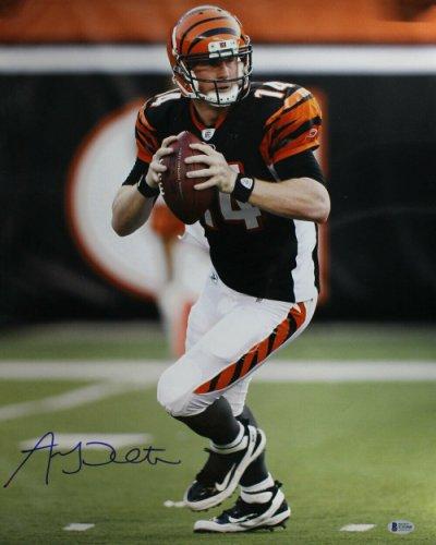 Andy Dalton Autographed Signed /Signed Cincinnati Bengals 16X20 Photo Beckett