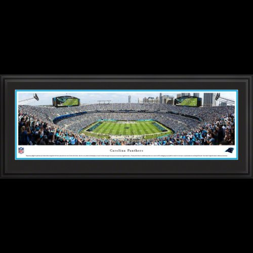 Carolina Panthers (50 Yard Line) Deluxe Framed Stadium Panoramic
