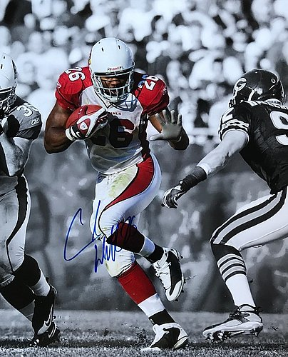 Chris Beanie Wells Arizona Cardinals 16-1 16x20 Autographed Signed Photo - Certified Authentic