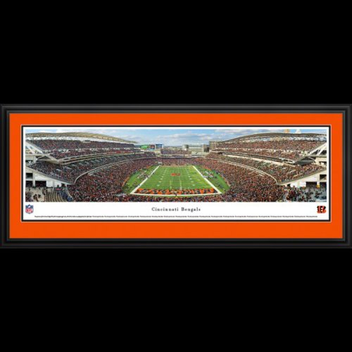 Cincinnati Bengals (End Zone) Deluxe Framed Stadium Panoramic