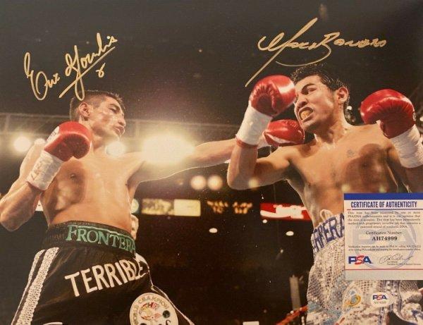 Boxing Autograph Michael Gomez Signed 12x8 inch Colour Photograph JM365