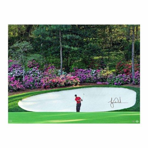 Tiger Woods Masters Photo - Azalea Image