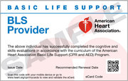 AHA BLS Provider (April 6 at 6:00pm)
