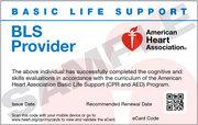AHA BLS Provider (October 5 at 6:00 pm)