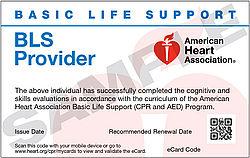 AHA BLS Provider (September 7 at 6:00pm)