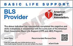 BLS Provider Refresher (September 28 at 6:00 pm)