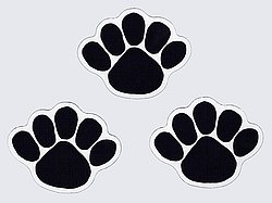 "Penn State Car Magnet Small Paw Set - 2.5"" x 3"""