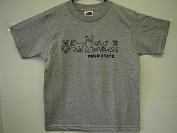 Youth T-Shirt Gray Tumbling Lions