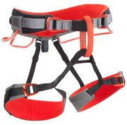 Black Diamond Equipment Momentum DS Climbing Harness 651065 (Black Diamond Equipment)