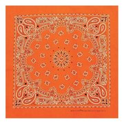Carolina Mfg Neon Paisley Bandana 516991 (Carolina Mfg)