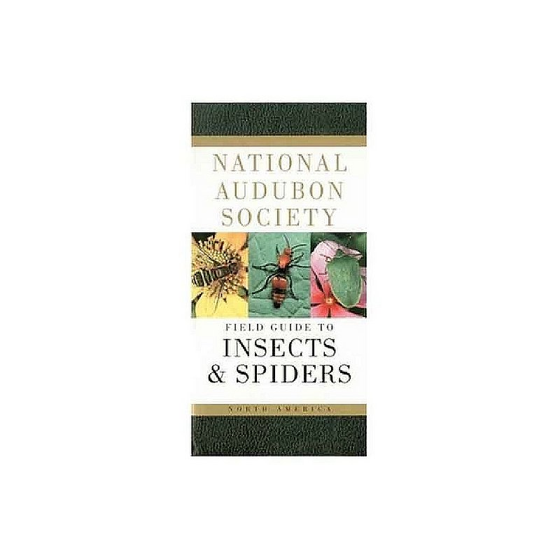 Field Guide to North American Insects and Spiders Book