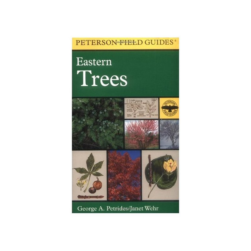 Eastern Trees Field Guide