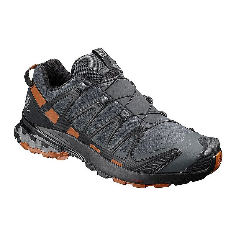 Salomon Men's XA PRO 3D v8 GTX Shoes L40989200 (Salomon)
